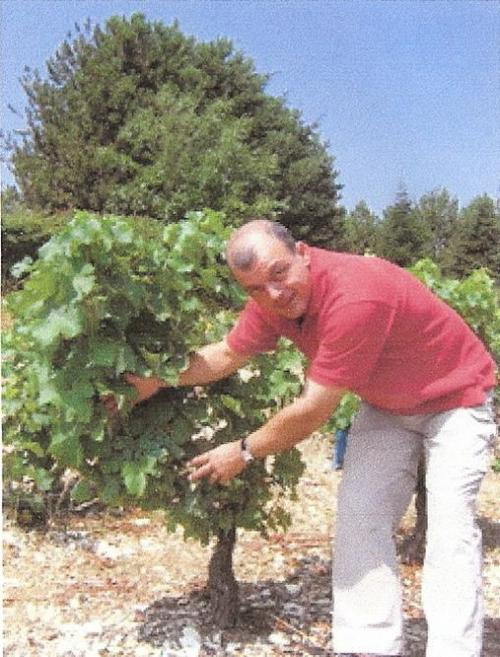 Eric Montintin in the vineyards of Sancerre